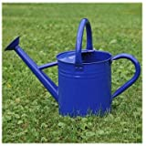 Gardener's Select Watering Can, Blue, 3.5 L