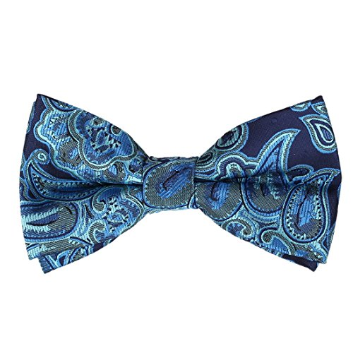 EBD1B06B Microfiber Excellent Anniversary Gifts Fashion Blue Patterned Pre-tied Bowtie Popular Business Presents for Designer By - Names Popular Designer