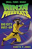 Ninja Meerkats (#6): Big City Bust-Up, Gareth Jones, 1250034035