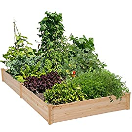 Yaheetech Wooden Raised Garden Bed Kit Planter Box for Vegetables Natural Wood 97 x 48.5 x 10in 17 BUILD YOUR DREAM GARDEN - This garden bed planter is separated into two growing area for different plants or planting methods. The baffle can be removed to create a bigger growing area if needed. You can get several garden beds to design and build your own dream garden. USEFUL & PRACTICAL - With this helpful planter, you can cultivate plants like vegetable, flowers, herbs in your patio, yard, garden and greenhouse, and make them more convenient to manage. SELECTED MATERIAL - Our raised garden bed is made of no paint, non-toxic fir wood. The boards are only sanded to prevent any undesired injury caused by wood splinters. 1.5cm/ 0.6'' thick solid wood boards are joined and fixed by screws, making it a durable piece for your long-term use.