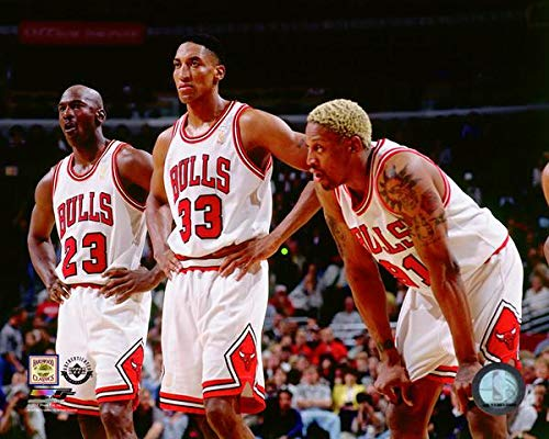 Michael Jordan, Scottie Pippen, Dennis Rodman Chicago Bulls NBA Photo (Size: 11