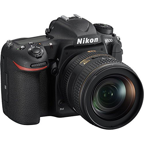 Nikon D3300 w/ AF-P DX 18-55mm VR Digital SLR – Black