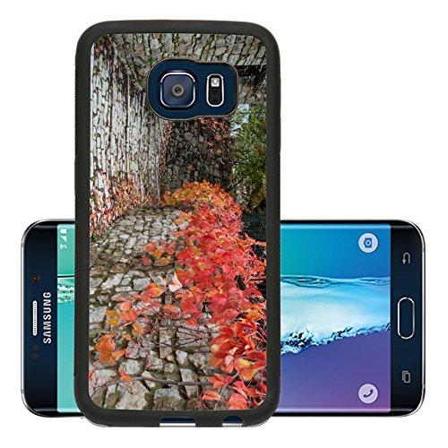 luxlady-premium-samsung-galaxy-s6-edge-aluminum-backplate-bumper-snap-case-image-id-25994490-road-wi