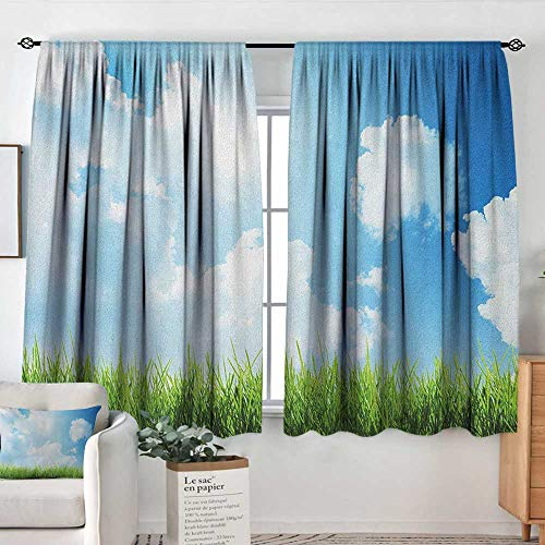 (Theresa Dewey Pattern Curtains Sky,Sunny Day Image with Green Grass Sun Rays Clouds Beauty of Nature Country Meadow, Blue Green White,Rod Pocket Curtain Panels for Bedroom & Kitchen 42