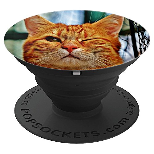 Funny Cute Winking Orange Cat Kitten Kitty Animal - PopSockets Grip and Stand for Phones and Tablets
