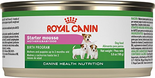 Royal Canin Canine Health Nutrition Starter Mousse Canned Dog Food, 5.8 Oz Cans, Pack of 3