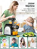 Juicer Machines, Cold Press Juicer Machine Easy to