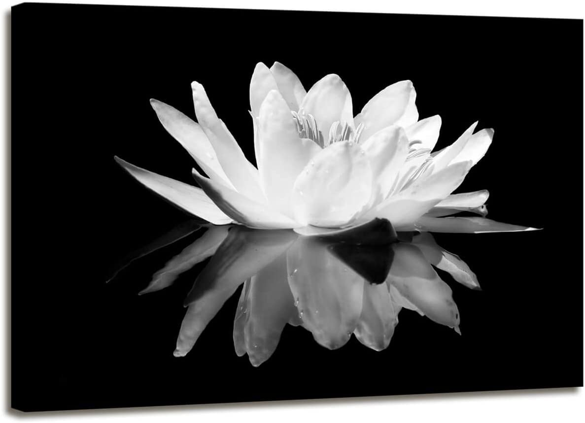 Amazon Com Maectpo Flower Canvas Prints Art For Bedroom Lotus Flower Pictures Prints Black And White Floral Bloom Blossom Close Up Pictures Prints On Canvas Wall Decoration For Bedroom Framed Posters Prints