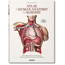 Bourgery: Atlas of Human Anatomy and Surgery
