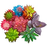 SUN-E 8 In Set Assorted Artificial Succulent Picks in Flocked for Plants DIY Materials Floral Arrangement