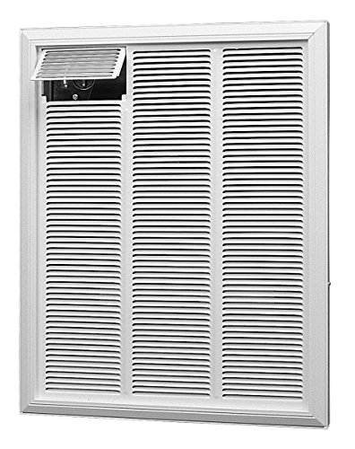 Dimplex RFI830D31 3000/2250-Watt 240/208-Volt 10236/7680-BTU Commercial Fan-Forced Wall Heater