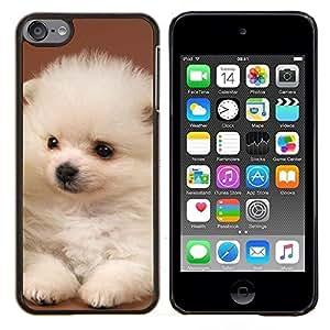 TECHCASE---Cubierta de la caja de protección para la piel dura ** Apple iPod Touch 6 6th Touch6 ** --Perrito blanco de Pomerania japonés Volpino Italiano