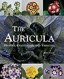 Auricula, Allan Guest, 187067362X