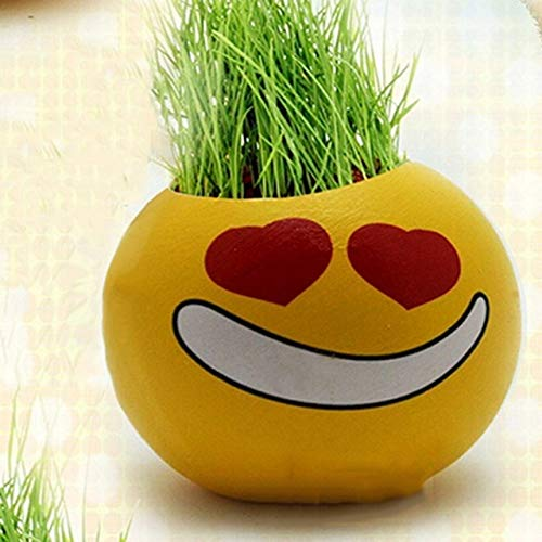 Zamtac 1pc Planter Grass Growing Seed Head Planters Ceramic Doll Miniature Plants Heads Desktop Decor Vase Cartoon Expression - (Color: 5)
