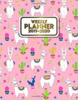 Amazon.com: 2019-2020 Weekly Planner: Nifty Cactus Llama ...