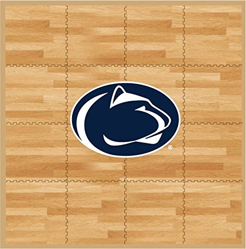 Coopersburg NCAA Penn State Nittany Lions Fan Floor, 8' x 8', (Lions Tailgate Mat)