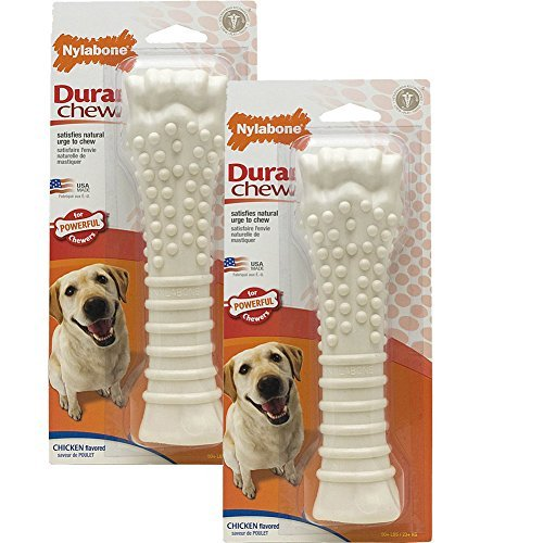 Nylabone Dura Chew Textured Souper Review
