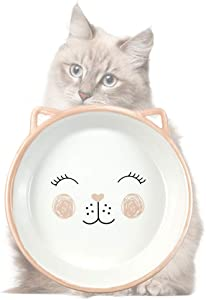 Ceramic Cat Bowl, Shallow Cat Food Bowls, Non Slip Cat Slow Feeding Bowls, Wide Cat Dish, Cat Food Bowl for Relief of Whisker Fatigue Pet Food & Water Bowls (Pink)
