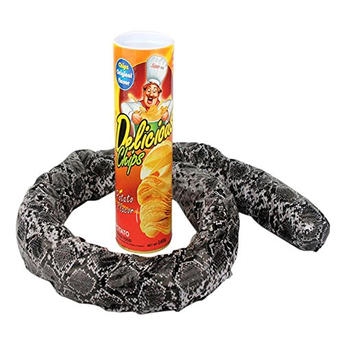Binglinghua Magic Potato Chip Cans Snake Scary Fries Toys April Fool Day Halloween Party Decoration Fun Toys Prank Toy]()
