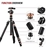 """Rangers 57"""" Ultra Compact and Lightweight Aluminum Tripod with 360° Panorama Ball head, ideal for travel and work"""