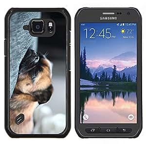 TECHCASE---Cubierta de la caja de protección para la piel dura ** Samsung Galaxy S6 Active G890A ** --Sleeping Pug Cachorro Cansado perro Pelo Corto