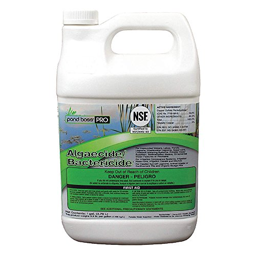 Liquid Pond Algaecide Bactericide, 1 gal.