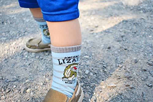 Tiny Captain Boy Dinosaur Socks 4-7 Year Old Boys Crew Cotton Sock Perfect Age 5 Gift Set (Medium, Green And Grey) by Tiny Captain (Image #5)