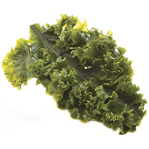 Artificial Kale Leaf Garnishing Green - 6'' L by CCI IND INCREDIBLE INEDIBLES