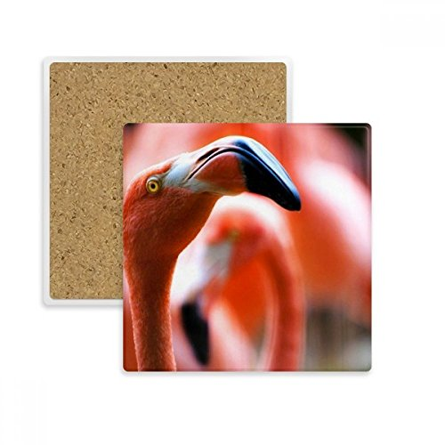 (Terrestrial Organism Flamingo Wild Animal Square Coaster Cup Mug Holder Absorbent Stone for Drinks 2pcs Gift)
