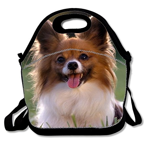 Lunch Box for Boys Polyester Lunch Tote for Women with A Cute Little Papillion