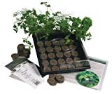 Living Whole Foods K5-1 Indoor Culinary Herb Garden Starter Kit Grow Fresh Cooking Herbs & Spices