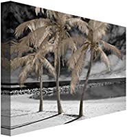16x20 Fantasy Island by Mike Jones 16 x 20 NCH6703 Portfolio Canvas Decor Portfolio D/écor Gallery Wrapped Canvas Wall Art