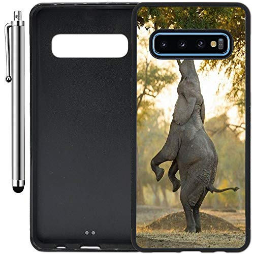 Custom Case Compatible with Galaxy S10 Plus (6.4 inch) (Jumping Elephant) Edge-to-Edge Rubber Black Cover Ultra Slim | Lightweight | Includes Stylus Pen by Innosub