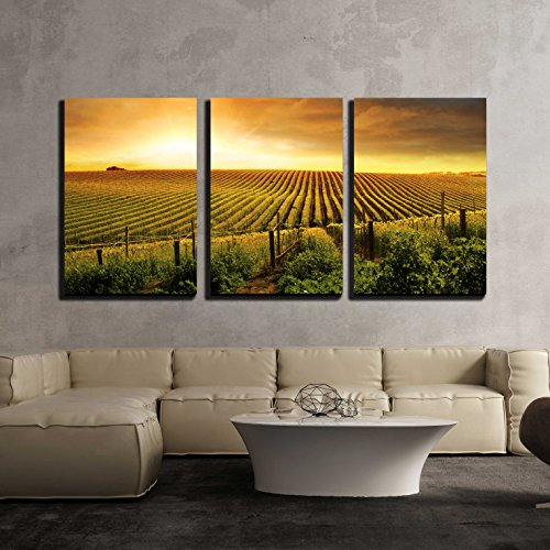 - wall26 - 3 Piece Canvas Wall Art - a Beautiful Sunset Over a Barossa Vineyard - Modern Home Decor Stretched and Framed Ready to Hang - 24