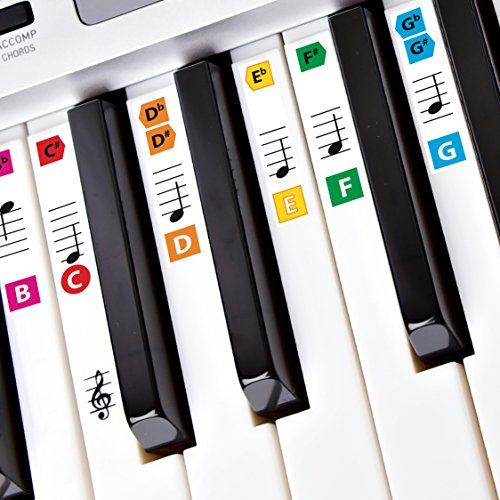 Best Reusable Color Piano Key Note Keyboard Stickers for Adults & Children's Lessons, FREE E-BOOK, Great for Beginners Sheet Music Books, Recommended by Teachers to Learn to Play Keys & Notes Faster (Beginners Piano Keyboard)