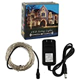 GALYGG White LED Fairy String Lights with Power Apdater, 33ft Waterproof Decorative Copper Wire, for Patio Bedroom Garden Christmas Tree Wedding Party Outdoor and Indoor