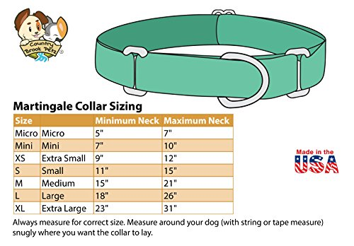 Country Brook Petz - Martingale Dog Collar - Groovy Collection with 5 Far Out Designs (Medium, 1 Inch Wide, Paint Splatter)