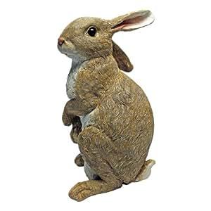 Case Of 4 Rabbit Standing Statues