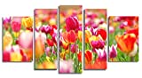 Startonight Glass Wall Art Acrylic Decor Set Colored Tulips, 5 Stars Gift and a Contemporary Clock Set of 5 Total 35.43 X 70.87 Inch 100% Original Artwork the Ultimate Wall Art