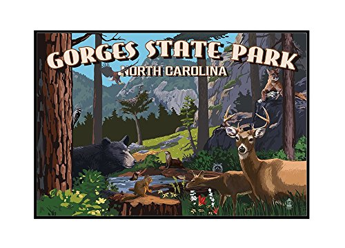Gorges State Park, North Carolina - Wildlife Utopia (24x16 Framed Gallery Wrapped Stretched Canvas) by Lantern Press
