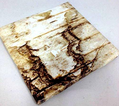 Forest Soap Dish (Custom & Cool {4.25