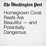 Homegrown Coral Reefs Are Beautiful — and Potentially Dangerous | Ben Guarino