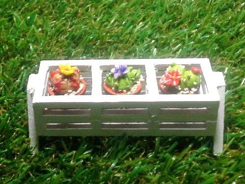 mini-cactus-house-plant-with-white-wooden-planter-for-mini-garden-or-dollhouse