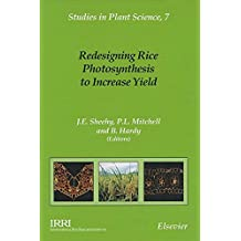 Redesigning Rice Photosynthesis to Increase Yield: Proceedings of the Workshop on the Quest to Reduce Hunger: Redesigning Rice Photosynthesis, Los Banos, ... - 3 December 1999 (Studies in Plant Science)
