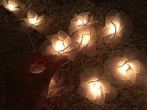 String Lights 20 White Rose Flower Fairy String Lights Wedding Party Floral Home Decor by Thai Decorated