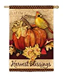 Evergreen Harvest Blessings Suede House Flag, 29 x 43 inches