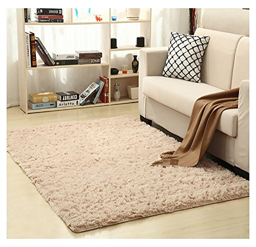 Ultra Soft Bedroom Carpet,Decorative Sitting Room Shaggy Area Rug, Fluffy Kids Playing Pad with Anti-Slip Bottom,Water Absorbent & Quick Dry Area Rug (Champagne,31
