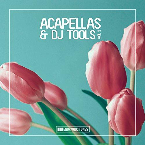 Enormous Tunes - Acapellas & DJ Tools, Vol. 1