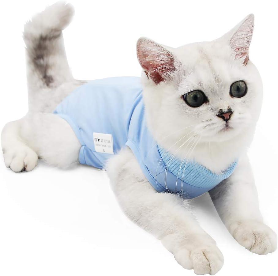 Dotoner Gatos Traje de recuperación Profesional para heridas Abdominales o Enfermedades de la Piel Alternativo para Gatos y Perros después de la cirugía Ropa para el hogar(Azul,m): Amazon.es: Productos para mascotas