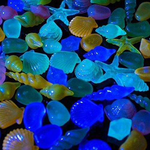 WINOMO 60pcs guijarros acuario piedras decorativas piedras coloridas de Cáscara concha para acuario pecera (Color mezclado): Amazon.es: Hogar